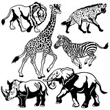 set with african animals black white