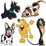 set with cartoon dogs