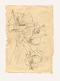 Hibiscus drawing on old paper