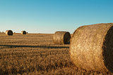 hay bale in the foreground of rural field
