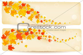 autumn banners with colorful leaves. Vector.