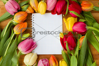 tulips on wooden table