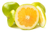 Citrus sveetie slices