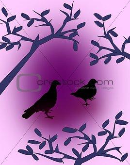 Black Doves