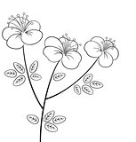 Pretty flower line-art