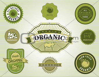 Set of Organic and Natural Food Labels