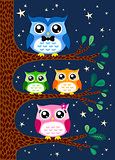 owl family design