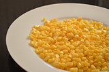 Closeup of fresh cooked corn on white plate