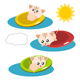 Cartoon cat in the pool illustration