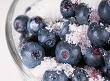 Blueberries in sugar