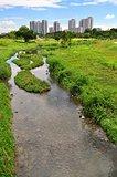 Scenic view of Bishan Park