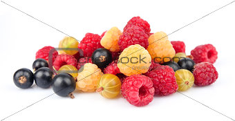 Ripe berries closeup