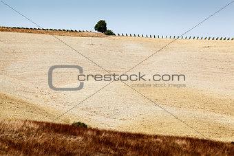 Tuscan Country near Montalcino, Tuscany, Italy