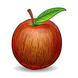 Red Apple Illustration