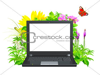 Laptop and green leaves