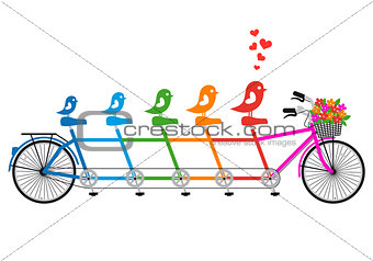 tandem bicycle with bird family, vector
