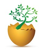 broken egg with the ecological tree
