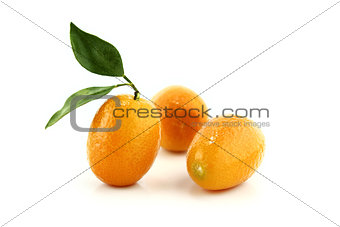 Small Orange Fruit