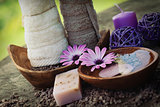violet dayspa nature set