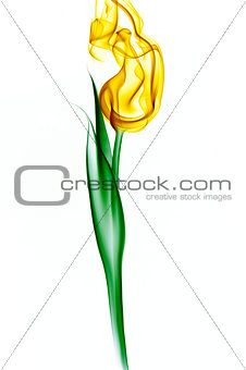 tulip made from smoke