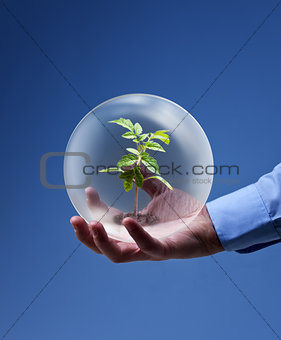 Environmental friendly business concept