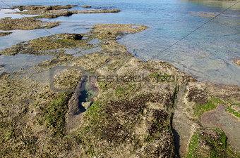 Tidal flat rocks