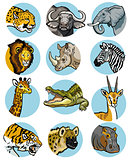 set with wild african animals