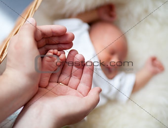 Parent carefully keep newborn baby's foot with tenderness