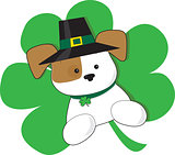 Irish Puppy