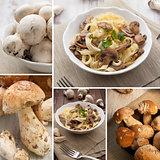 Mushroom composition