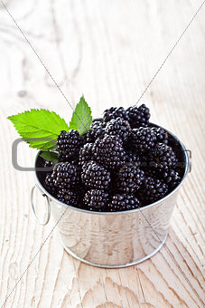 Small bucket of fresh blackberries