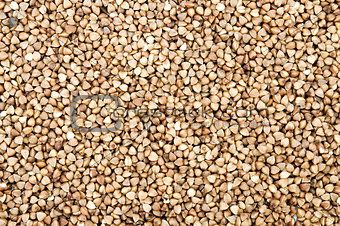 cleaned buckwheat