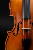 Violin front view cropped