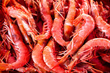 Fresh prawns in a market place