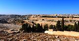 Golden Jerusalem