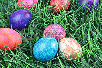 Tie Dyed Easter Eggs in Grass
