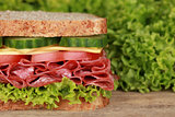 Sandwich with pepperoni, lots of copyspace