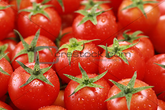 Small tomatoes forming a background