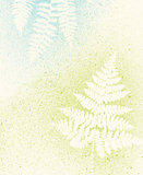 Fern Texture Background in soft colors
