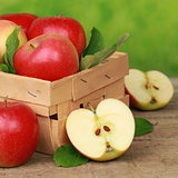 Freshly picked apples in a wooden box