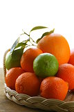 different types of citrus, lime, orange, grapefruit and mandarin