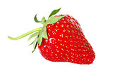 fresh, juicy and healthy strawberry isolated over white