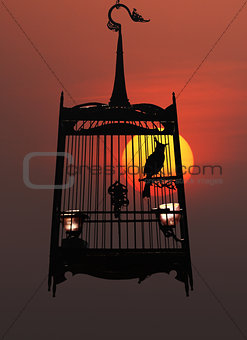 Singing bird in cage, against the setting sun