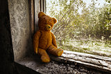 Old toy bear abandoned in the ruins.