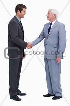 Young and mature businessmen shaking hands