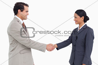 Side view of business partners shaking hands