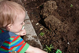 A child doing the garden