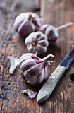 Rustic garlic bulbs on wooden background