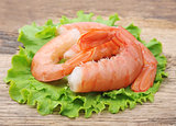 shrimps with salad lettuce