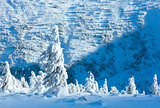 Winter mountain landscape with snowy trees